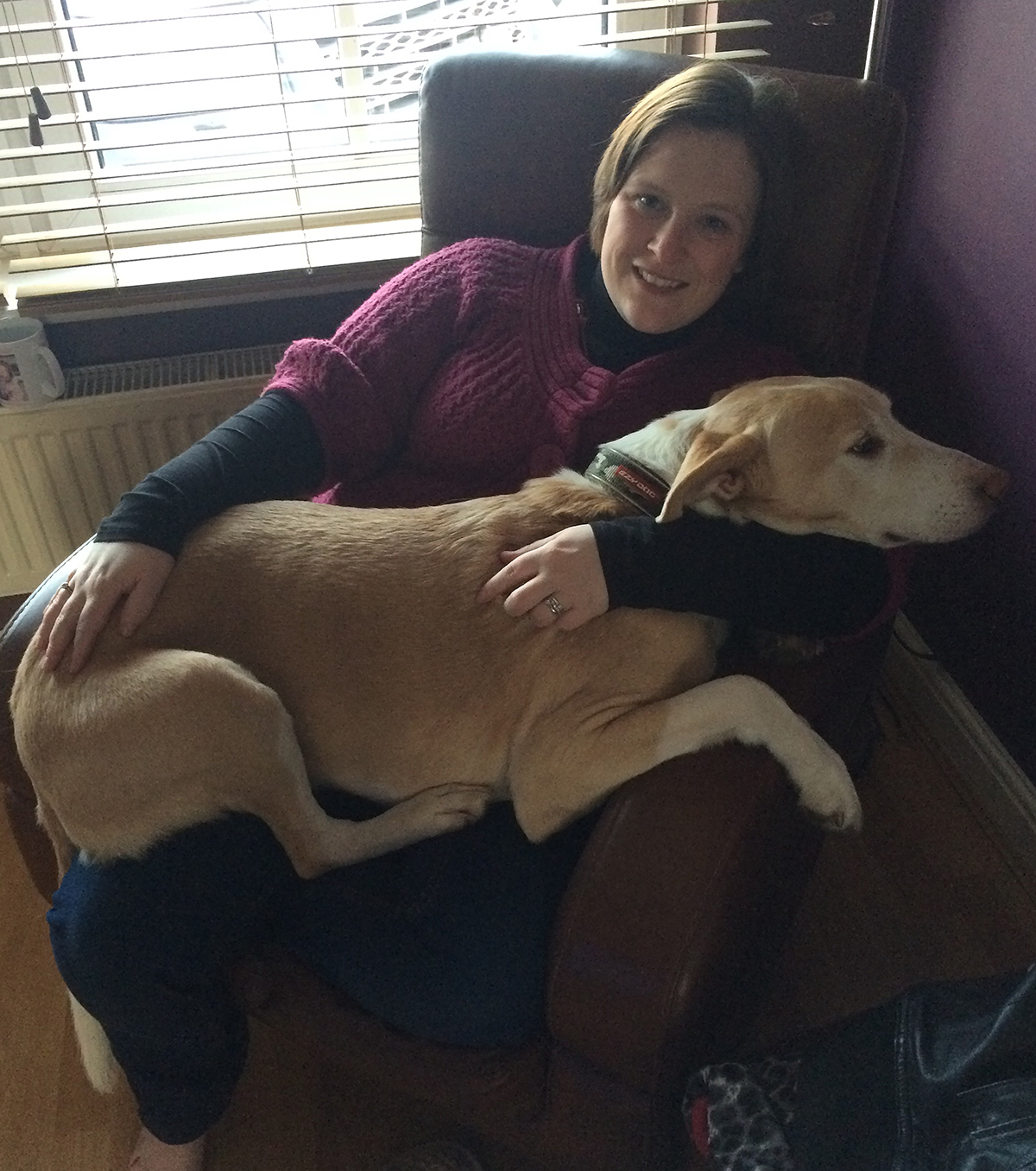 Ziggy Dog with Lisa McCabe Stardust Doggy Care Holistic therapies
